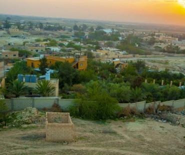 Greening the Desert - OPEN DAY TOURS
